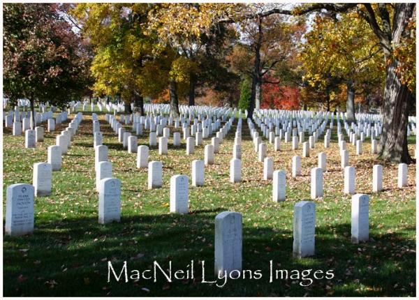 Arlington National Cemetery - MacNeil Lyons Images